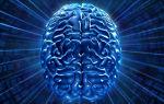Симптомы лейкоэнцефалопатии головного мозга: что это такое и как с этим бороться?