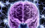 Виды энцефалопатии головного мозга: как лечить и что это такое ?