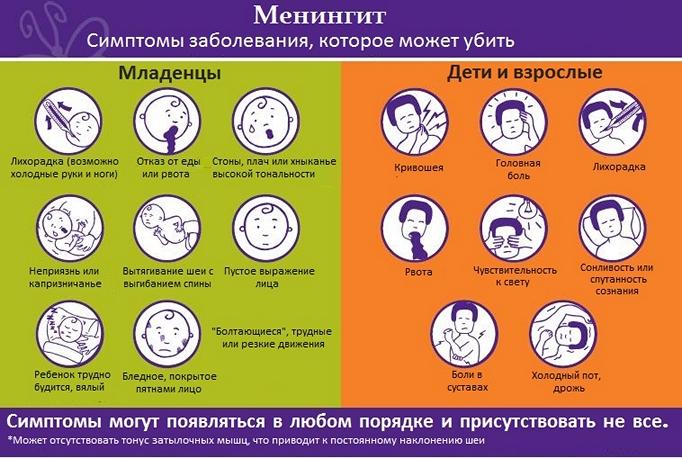 менингит симптомы - схема