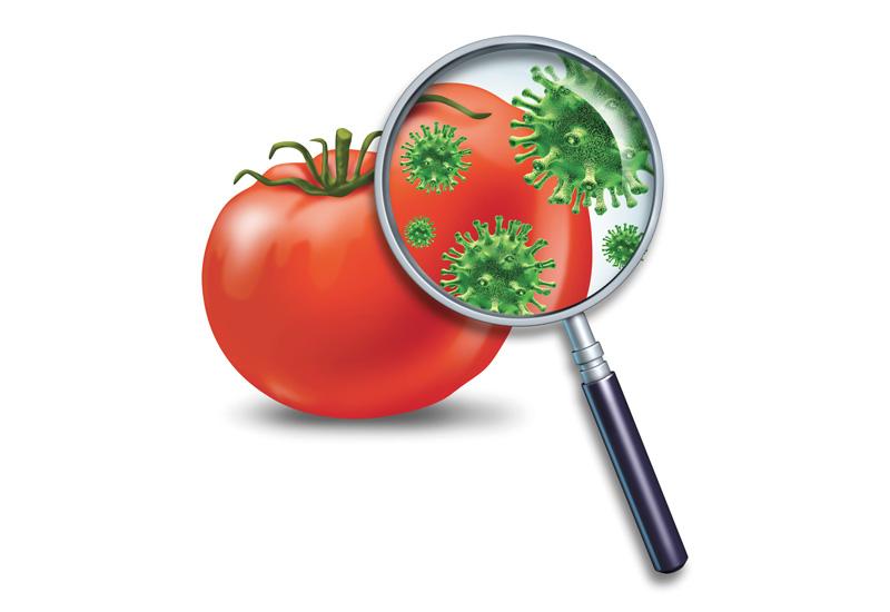 на помидоре микробы