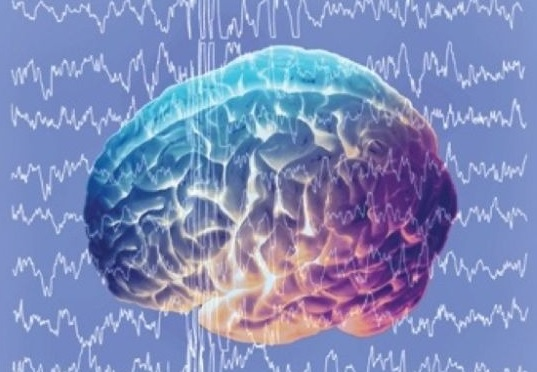 Легкие регуляторные изменения биоэлектрической активности головного мозга