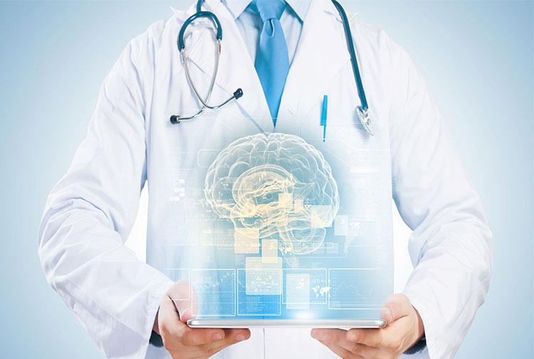 доктор держит модель мозга