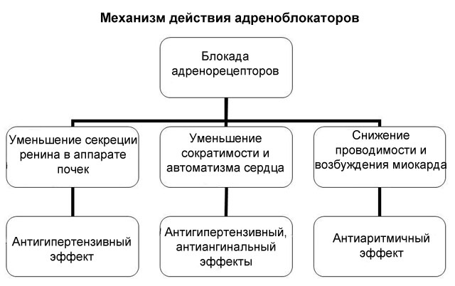Группа адреноблокаторов