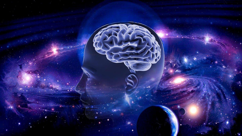 мозг и вселенная