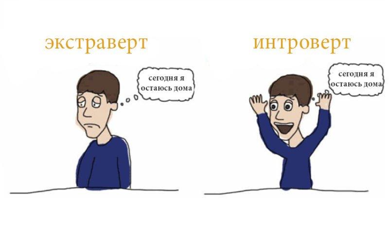 интроверт и экстроверт